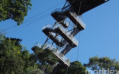 AJ Hackett Bungy Tower